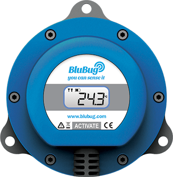BluBug Picture